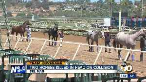 Two horses die in Del Mar accident [Video]