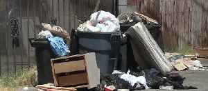 Las Vegas approves trash rate hike to clean up city streets [Video]