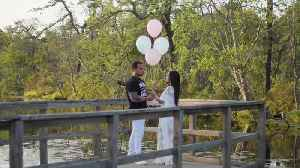 Gender reveal turns into surprise marriage proposal [Video]