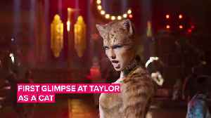 Taylor Swift's 'Cats' role is sassy, flirty & sparkly [Video]
