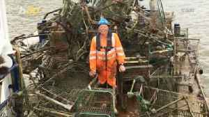 Shopping Cart Salvage! River Cleaners Dredge Up About 70 Shopping Carts from River in One Day [Video]