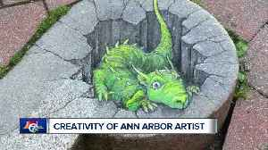 Ann Arbor Street Artist: 'If you stare at it long enough, is going to show you what it wants to be' [Video]