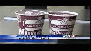 MSU ICE CREAM [Video]