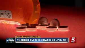Overdose deaths rise in Tennessee despite national trend [Video]