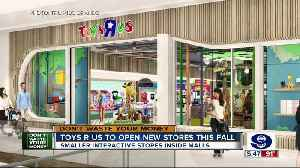 Toys R Us to open new stores this fall [Video]