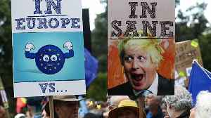 Pro-EU protesters hold rally in London [Video]