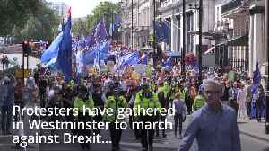 Protesters gather for march against Brexit [Video]