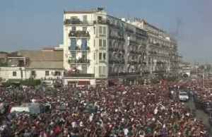 Algiers crowds celebrate AFCON victory [Video]