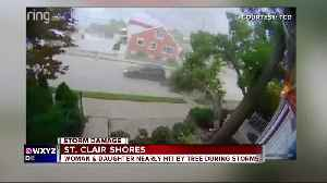 Wind takes down large tree onto home in St. Clair Shores [Video]