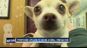 Boise City Council member proposes change to city animal code [Video]