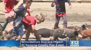Watermelons Are Replacing Piglets At This California County Fair Event [Video]