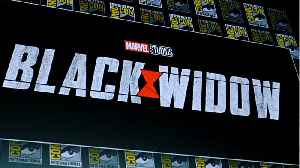 'Black Widow' Movie Will Answer 'Endgame' Questions [Video]