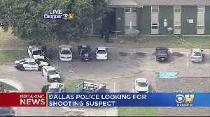 Police Searching For Suspect Who Shot Man In The Head In Dallas [Video]