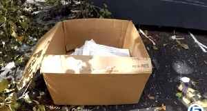 Stacks of tax documents found by dumpster [Video]