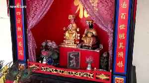 Elusive giant python finds shelter in spirit shrine at Chinese temple in Thailand [Video]