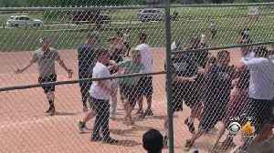 Adults Charged In Lakewood Youth Baseball Brawl Apply For Diversion Program [Video]