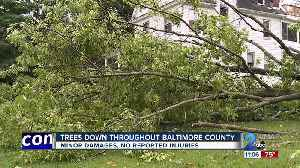 Trees down throughout Baltimore County causes minor damage [Video]