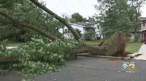 Thousands Of New Jersey Residents Still Without Power After Severe Storm Strikes Region [Video]