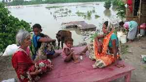 Monsoon downpours kill hundreds and displace millions in India [Video]