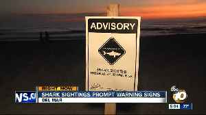 Shark sightings prompt warning signs at San Diego beaches [Video]