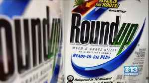 Weed Killer Found In Kids At Higher Levels Than Parents [Video]