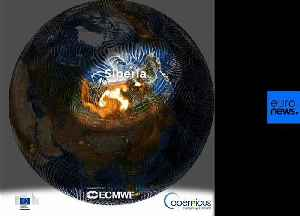 Watch: This animation shows CO2 impact of unprecedented wildfires in Siberia and Alaska [Video]