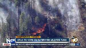 State commission to vote on wildfire fund [Video]