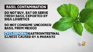 FDA Issues Warning About Fresh Basil Imported From Mexico [Video]