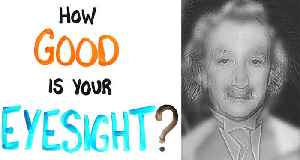 Einstein Or Marilyn Monroe? This Optical Illusion Will Put Your Sight To The Test [Video]