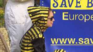 Activists all abuzz as Belgians protest over use of pesticides in Europe [Video]