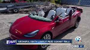 Family of Tesla driver killed in crash in suburban Delray Beach sues automaker [Video]