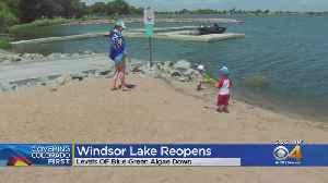 Windsor Lake Reopens After Blue Green Algae Bloom [Video]
