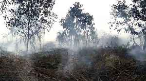 Indonesian students forced to wear masks during 'haze' crisis [Video]