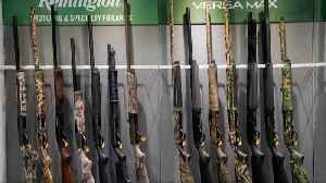 Gunmaker asks Supreme Court to block lawsuit [Video]