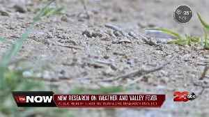 News video: Public health starting year-long research project on valley fever