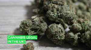Within years, cannabis could be legal in the UK [Video]