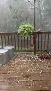 Hail Storm Smashes Decking [Video]