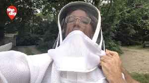 Backyard Honey: Long Island Beekeeper Keeps It Local [Video]