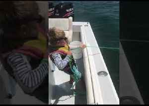 Best in Class: Little Boy Nets School of Fish While Catching Bait for Dad [Video]