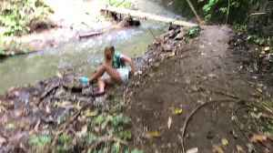 Girl Trying to Swing on Tree Vine Falls into Creek After It Snaps [Video]