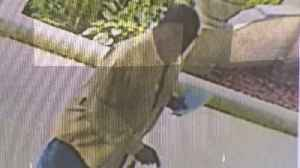 Man Suspected Of Stealing money From Catholic Churches On Chicago's South Side [Video]