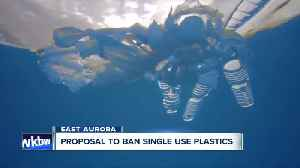East Aurora proposes plastic ban [Video]