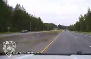 Police officer narrowly avoids collision with moose on Alaska's highway [Video]