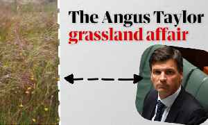 The Angus Taylor grassland affair: So what's the story? – video explainer [Video]