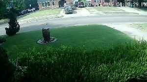 Truck Makes a Mess of the Yard [Video]