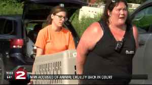 Accused animal abuser back in court. [Video]