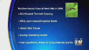 Tarrant County Health Officials Confirm 1st West Nile Virus Case Of 2019 [Video]