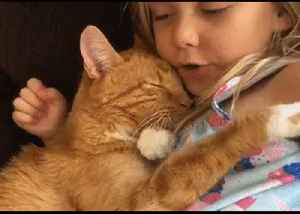You Are My Sunshine: Little Girl Serenades Sleepy Kitty [Video]