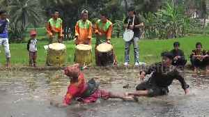 This traditional form of Indonesian martial arts sees two people battle it out in a muddy rice field [Video]