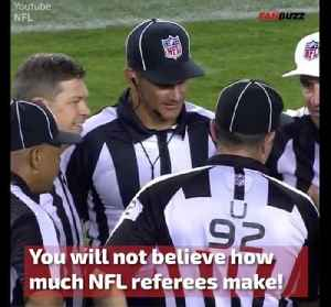 The NFL Referee Salary Is More Than A Doctor's [Video]